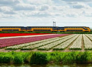 Встречаем поезда работающие от ветра