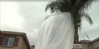Космический аппарат упал прямо в жилой двор