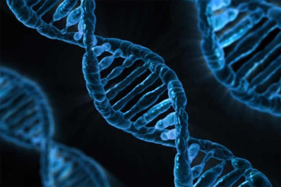 Sophia Genetics тратит миллионы долларов на диагностику геномных данных