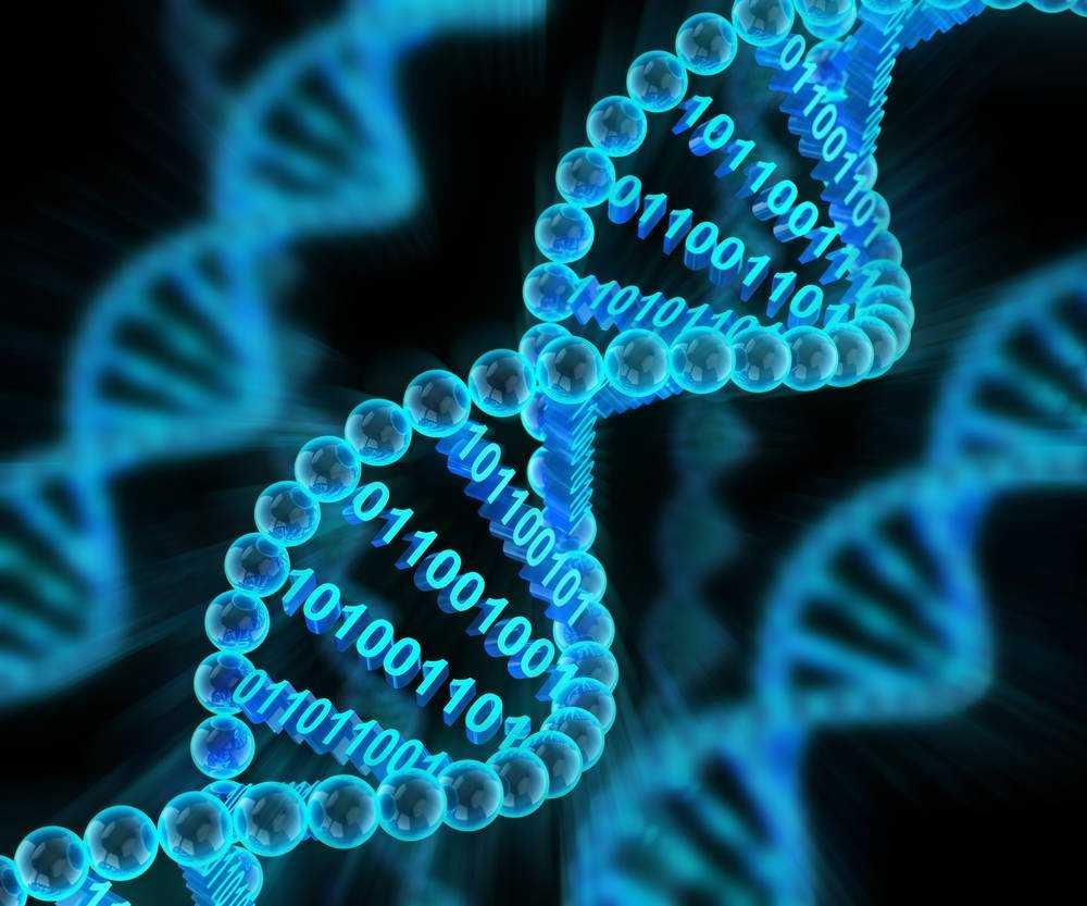 Обвиняемый убийца получает право проверить исходный код комплекта для тестирования ДНК, используемого полицией • Реестр