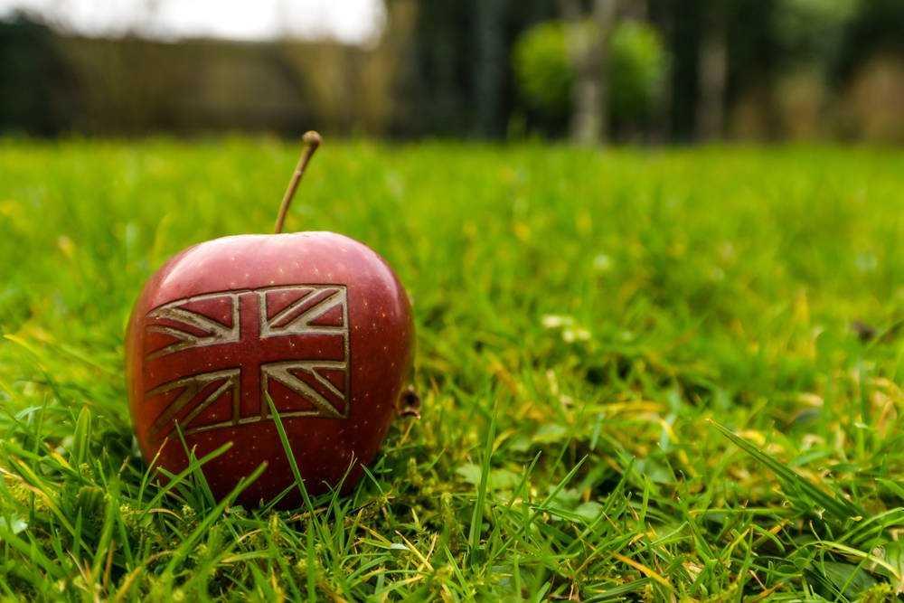 Британский наблюдательный орган за монополией запускает расследование после того, как производители приложений для iOS критикуют драконовские условия и положения магазина программного обеспечения Apple • The Register
